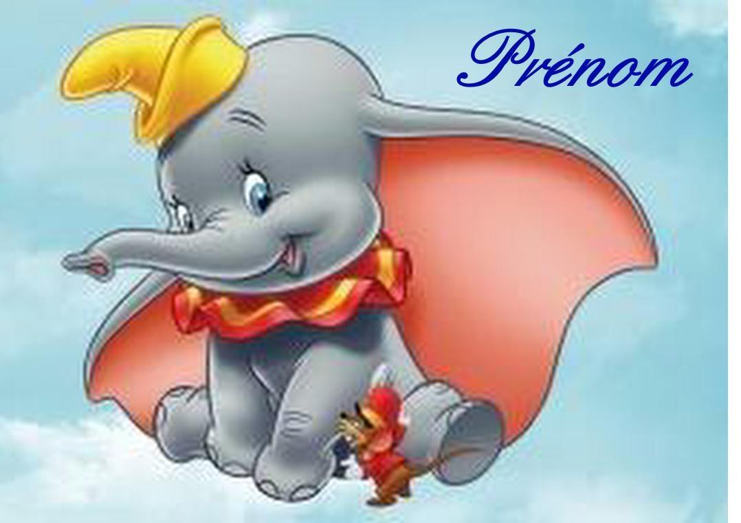 Dumbo carree