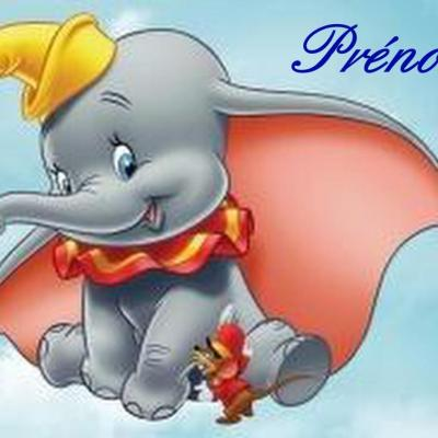 Dumbo carree